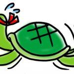 ミドリガメ、イシガメ、クサガメの仕草と行動が意味するものとは?